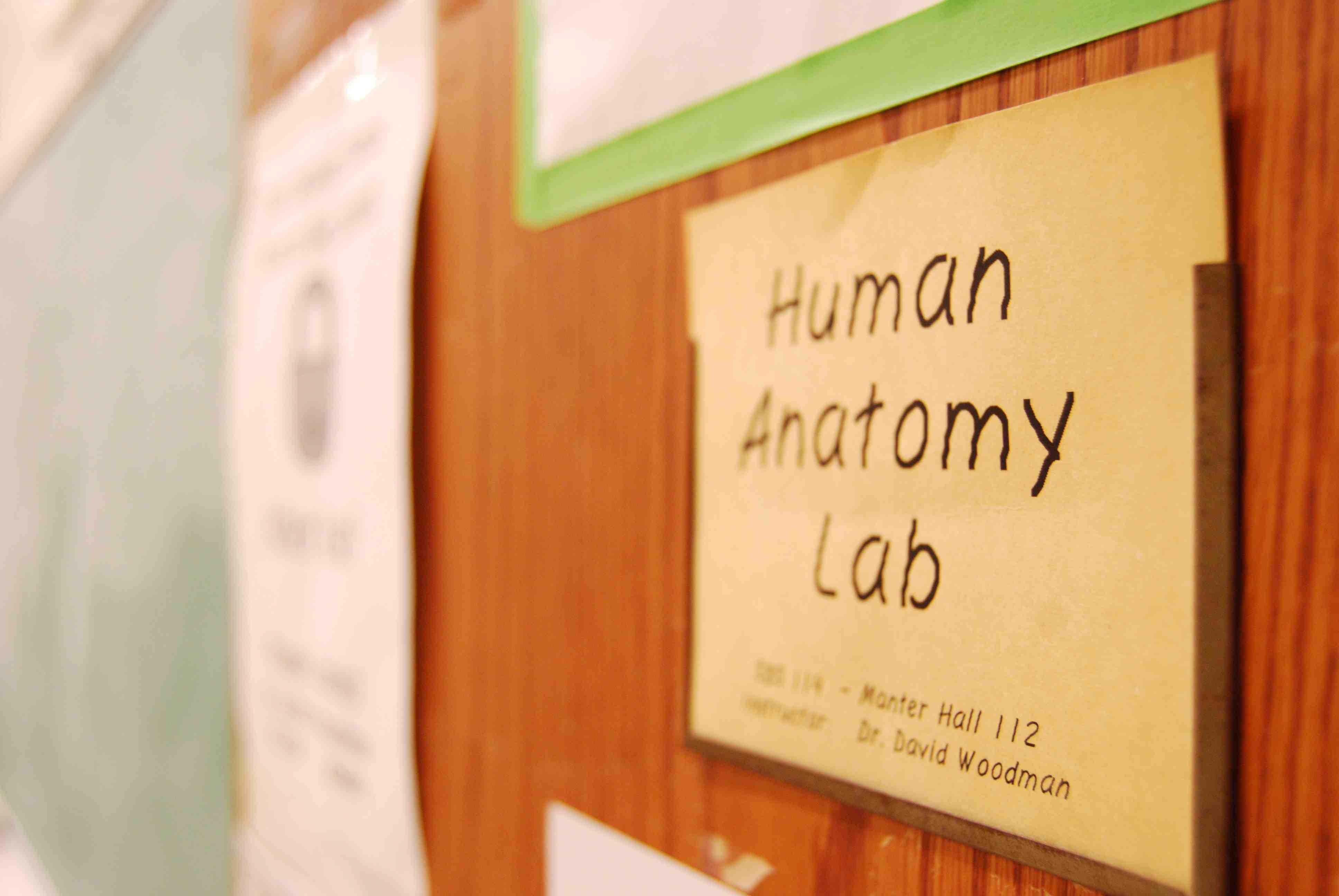 Human Anatomy | Nebraska